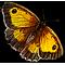 logo JLHentz